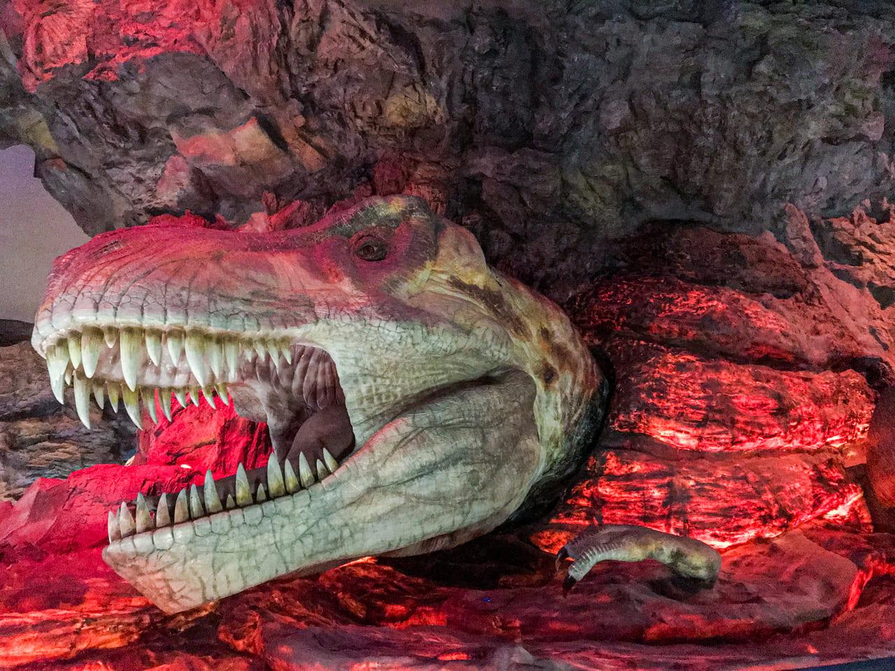 /なぜか溶岩に飲み込まれているティラノサウルス