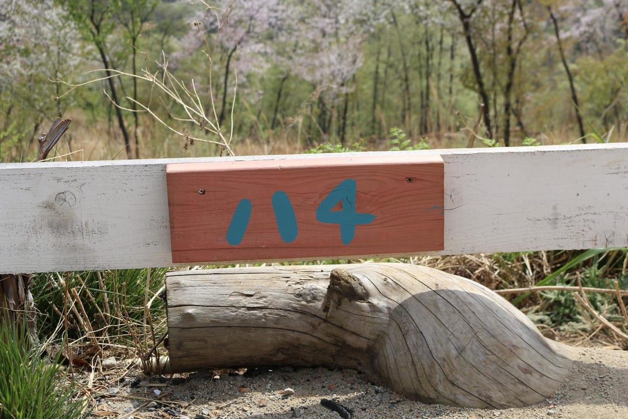 ほったらかしキャンプ場のハナレサイト4