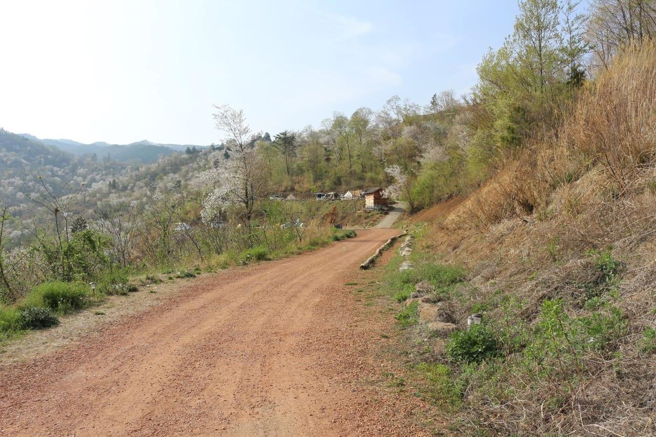 ほったらかしキャンプ場ハナレサイト手前の道