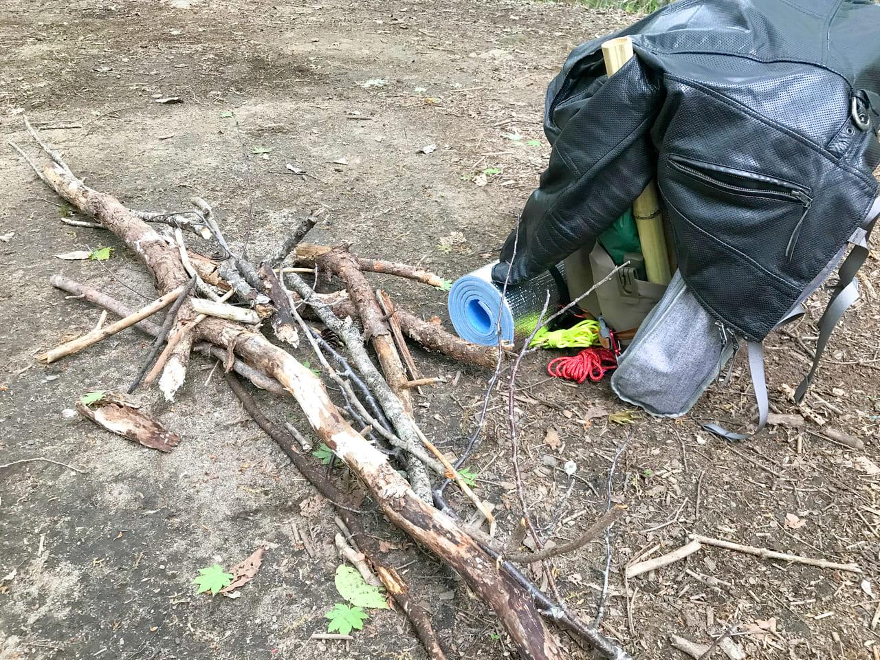 /キャンプ場内では枯れ木も拾い放題