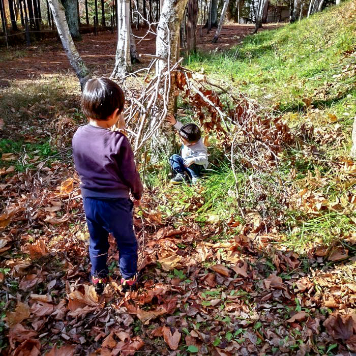 /キャンプ場内で枯れ枝を集める子供達