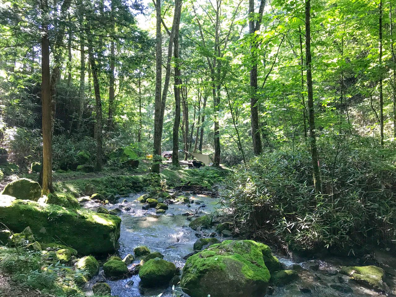 /キャンプ場内を流れる渓流