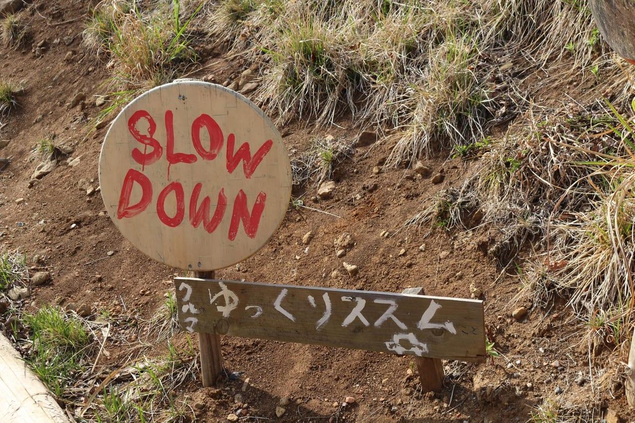 スピード注意