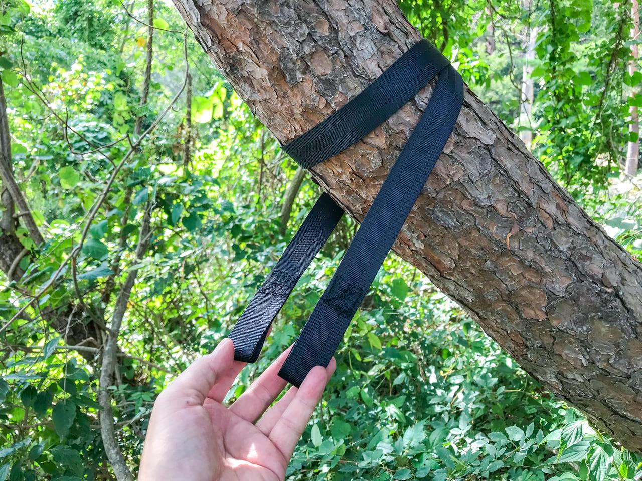 /ツリーハガーを木に巻き付ける