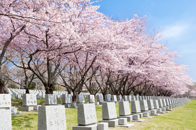 /公園墓地