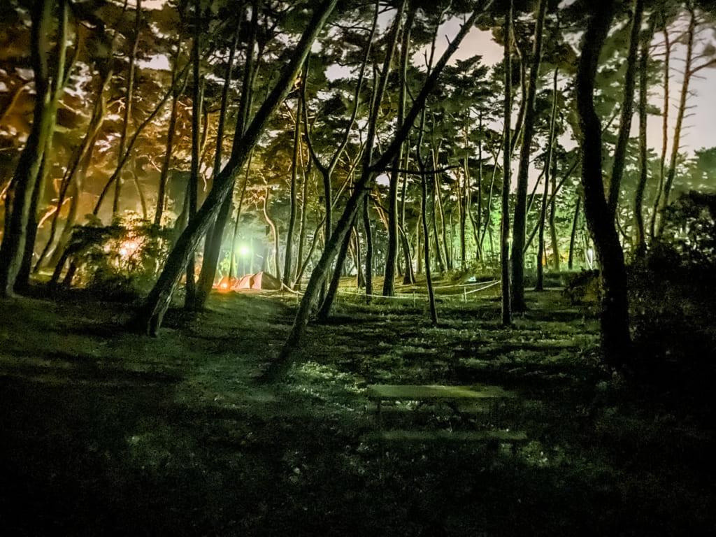 /大洗キャンプ場の夜景-1024x768