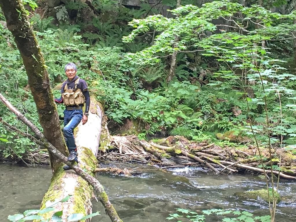 奥入瀬渓流にかかる木の橋