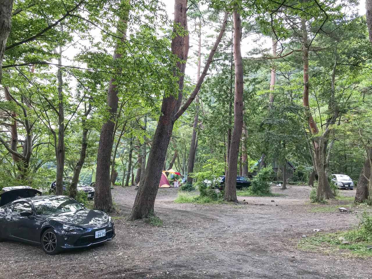 /炊事場の目の前にある林間サイト
