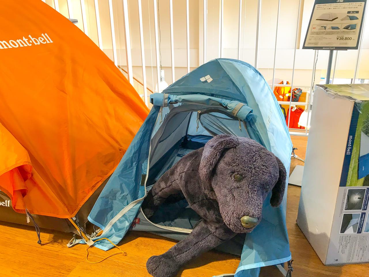 /犬用テントが可愛い
