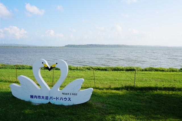 /稚内大沼の湖畔の風景