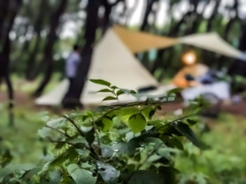 /茅ヶ崎柳島キャンプ場-1024x768