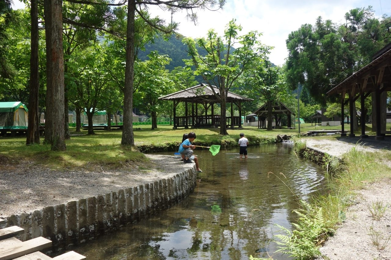 /葛川森林キャンプ村で川遊び
