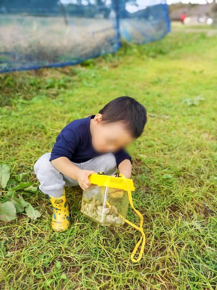 /虫取りをして遊ぶ子供