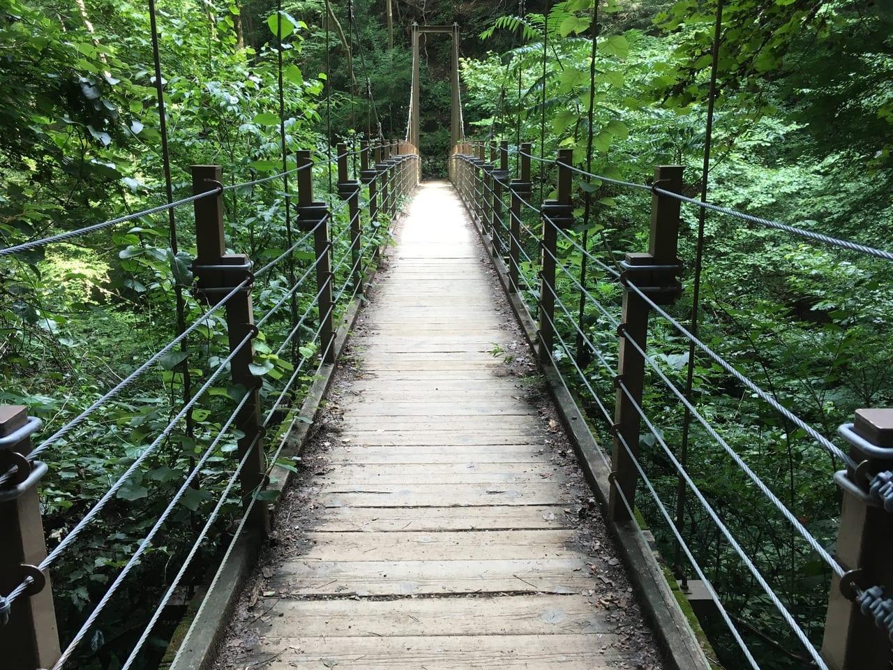 /高尾山4号路の吊り橋