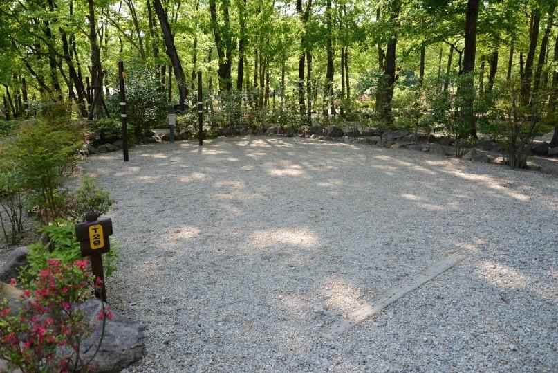 /1185-camp-cabins06