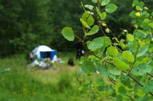 雨とサマーキャンプ