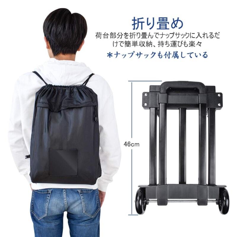 403-carrycart-02