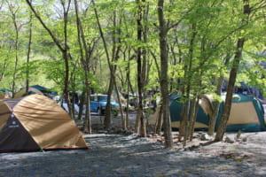 林間キャンプサイト