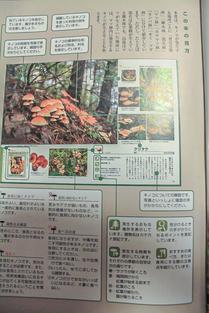 よくわかるきのこ大図鑑ー3ページ-683x1024