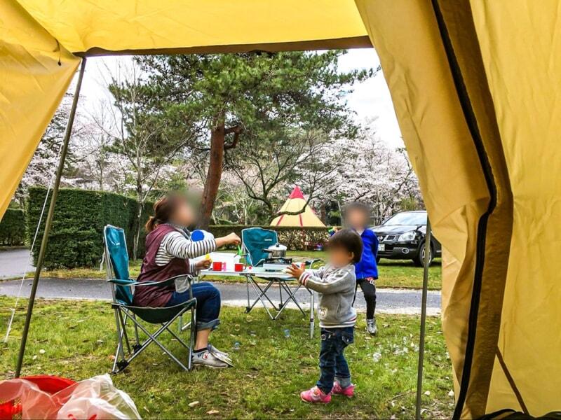 テント内から見る桜と家族の団らん