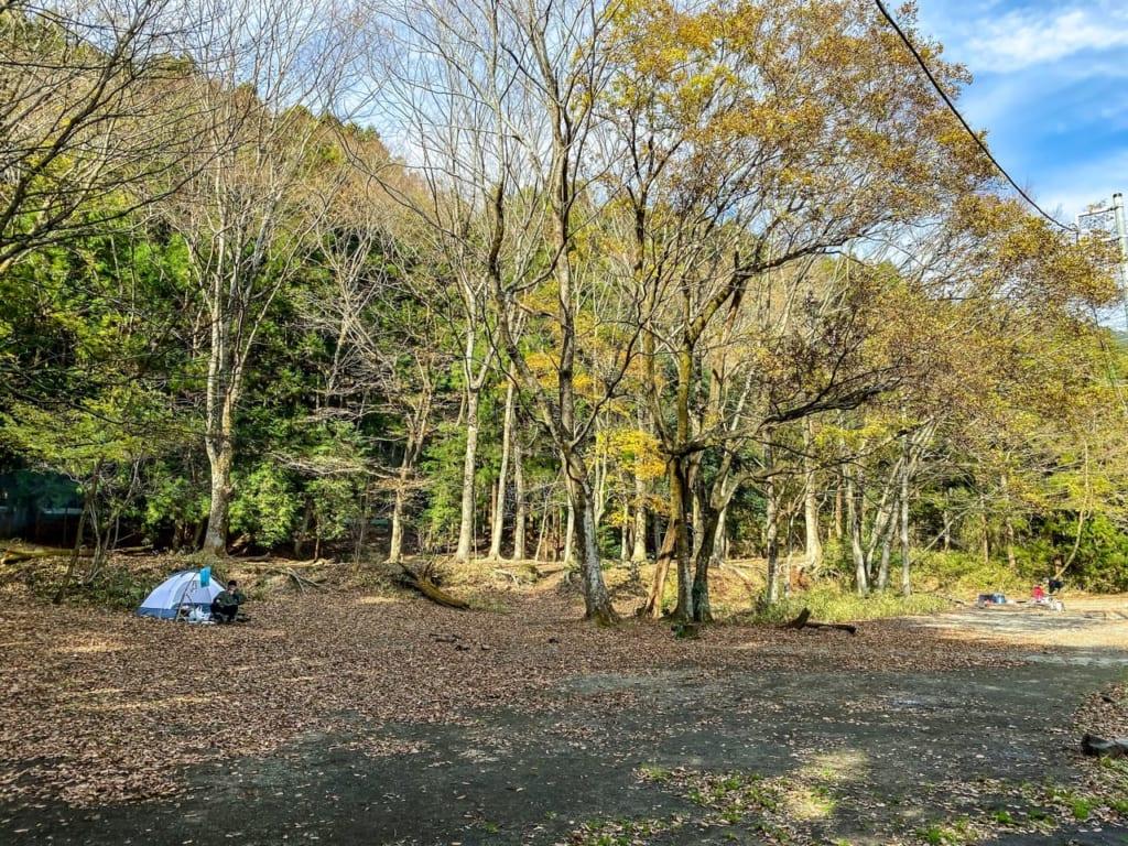 林間フリーサイトの様子1-1024x768