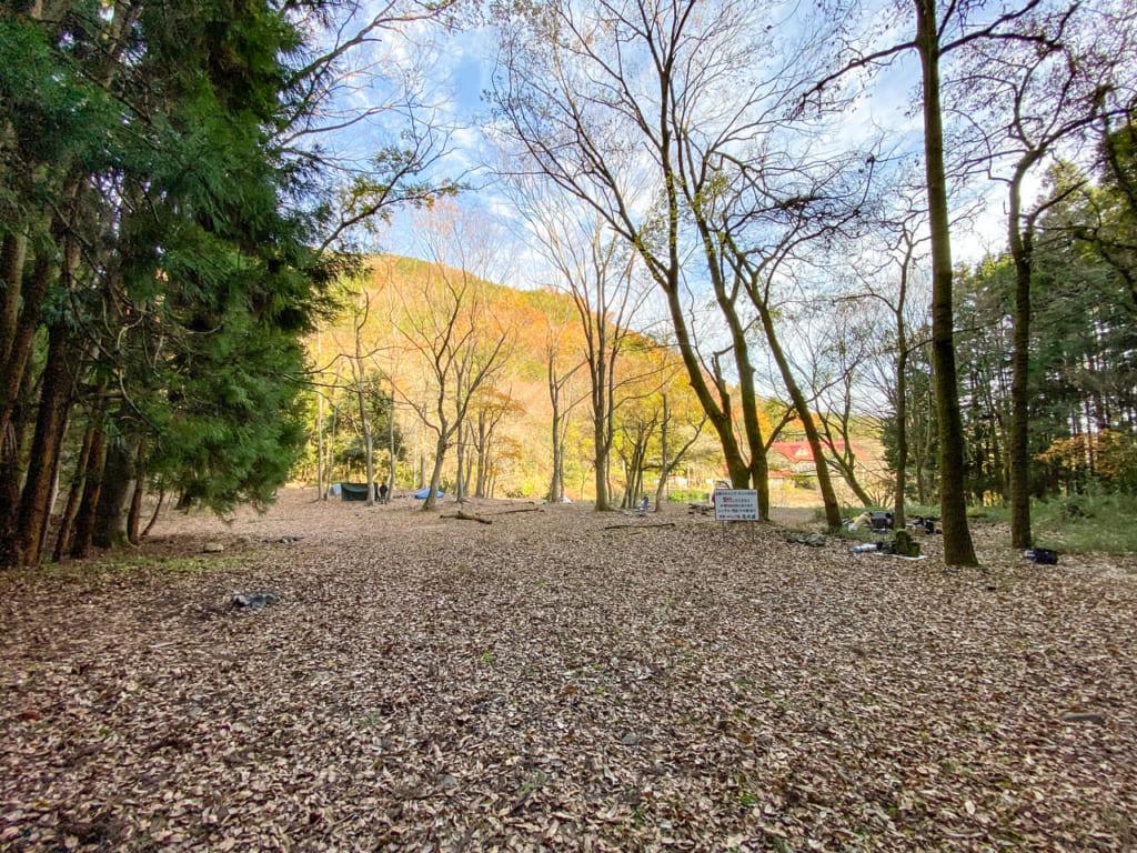 林間フリーサイトの様子2-1024x768