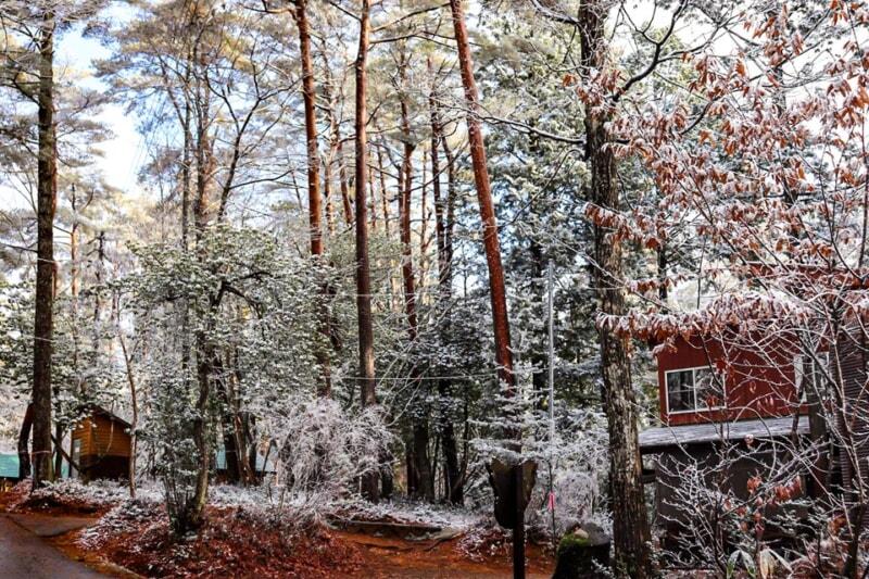 雪が降ったN.A.O.明野高原キャンプ場の場内