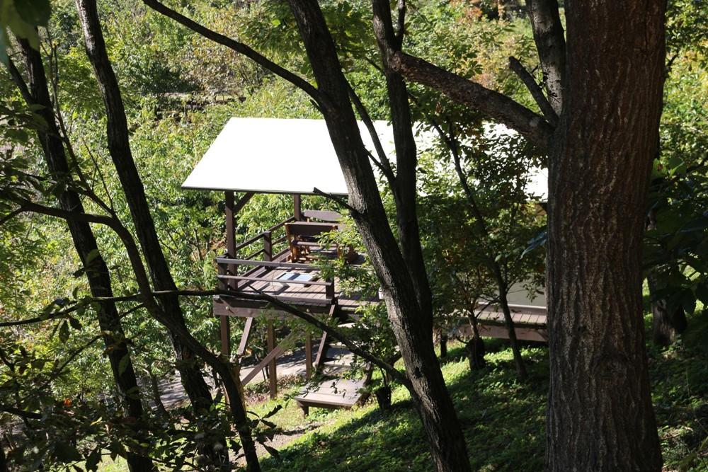 7823-東の高台エリアの常設テントの横