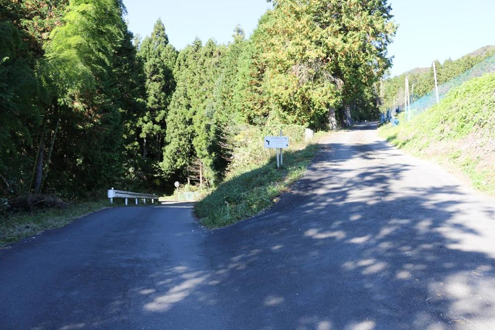 7823-舗装された道の分岐路