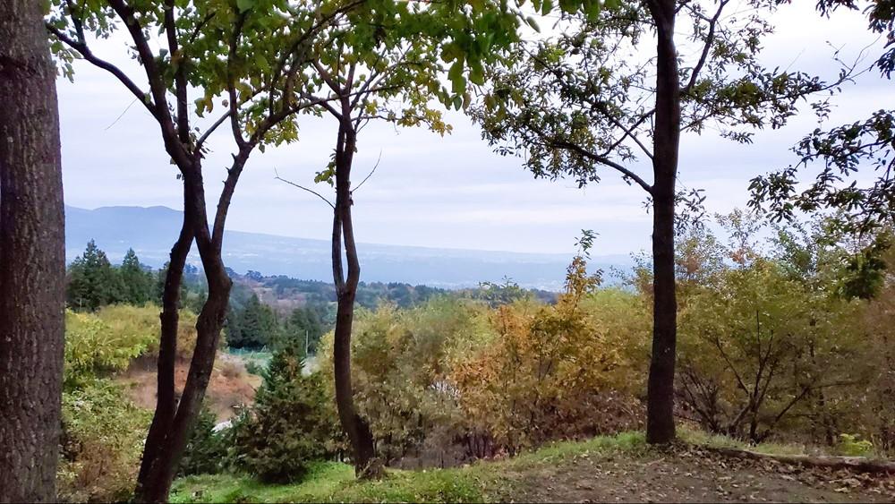 7823-西の高台エリアW5の景色