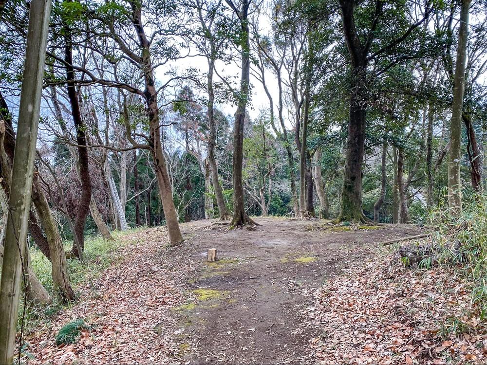 ウッドキャビンの奥にある狭めの林間サイト