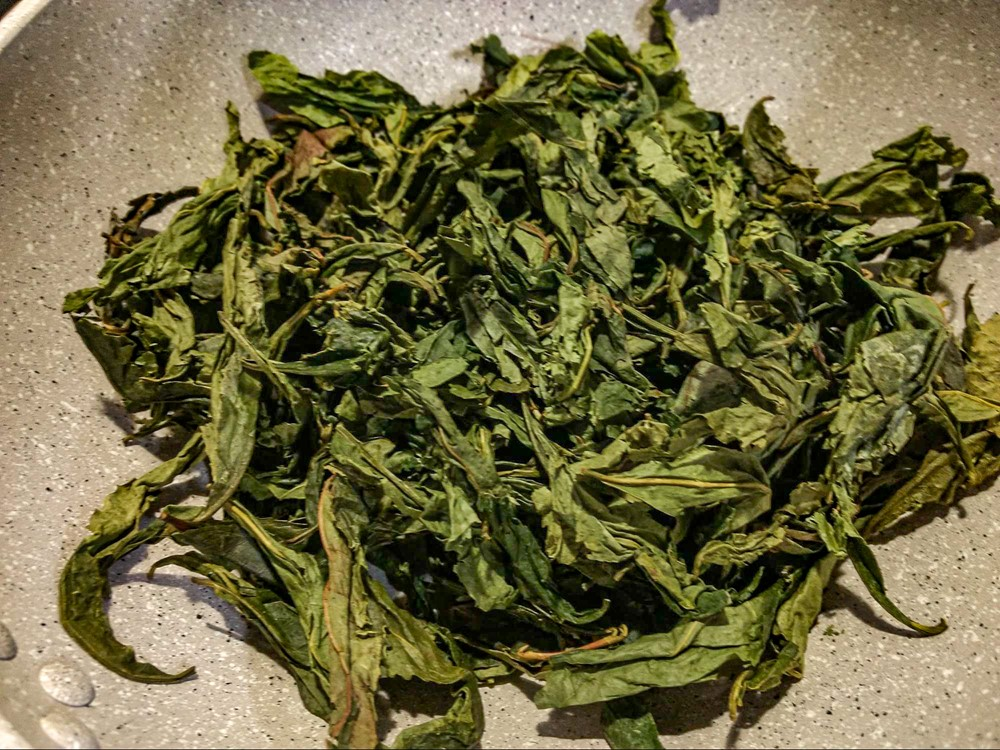 自生している野生の茶の木を乾燥させて自家製のお茶を作ってみる