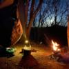 千葉の勝古沢キャンプ場で猫に癒されながら冬のハンモック泊してきました