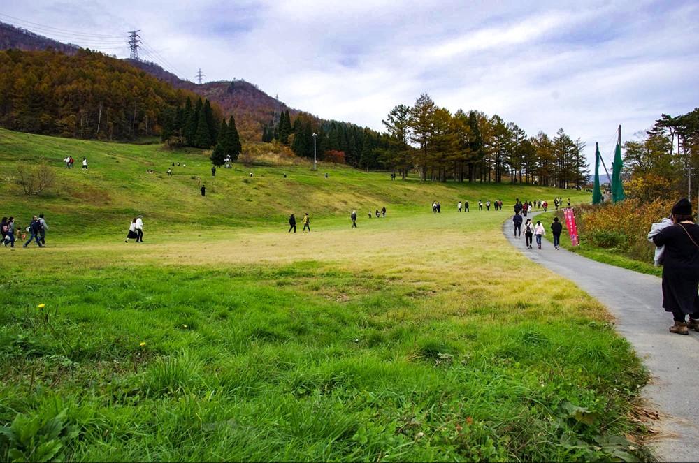芝生が生い茂る広場