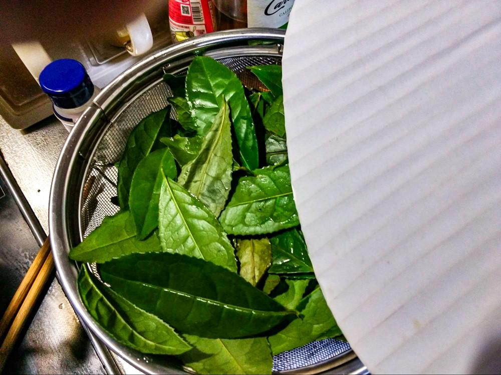 蒸し終えた茶葉を団扇で冷やす