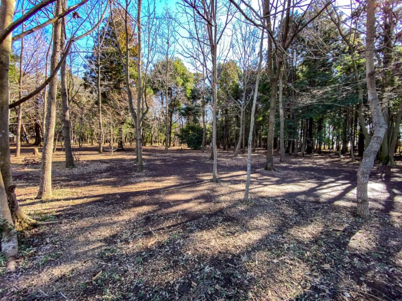 豊里ゆかりの森が冬キャンプを開始