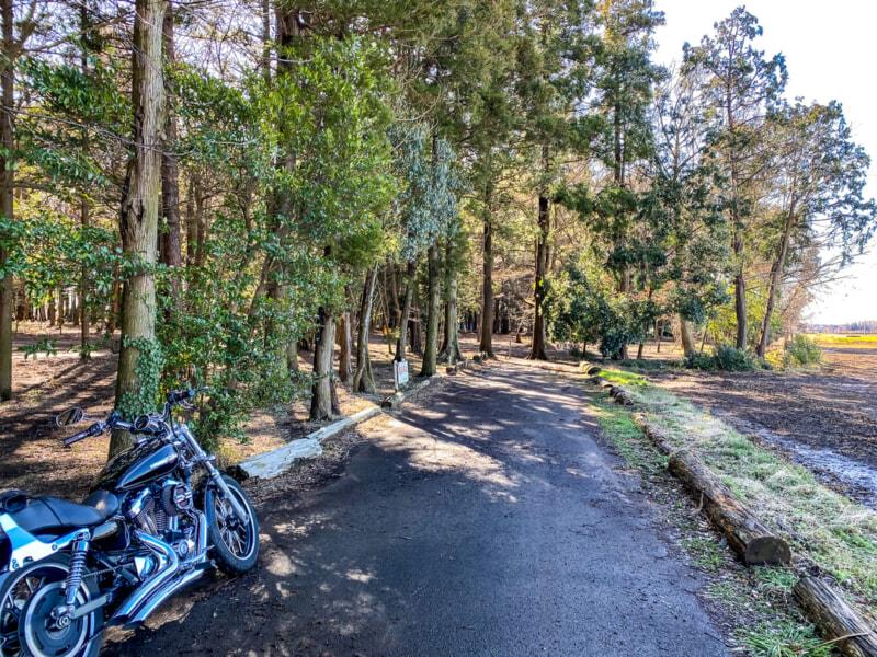 豊里ゆかりの森のテントサイト手前の道路