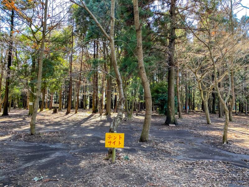 豊里ゆかりの森のテントサイト