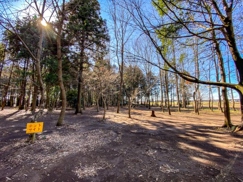 豊里ゆかりの森のテントサイト3