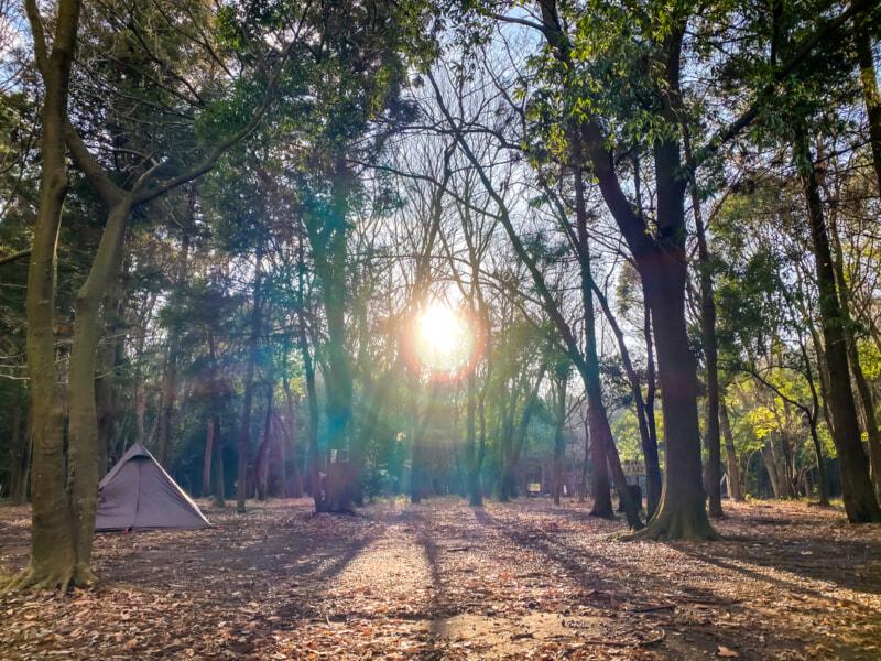 豊里ゆかりの森の朝日
