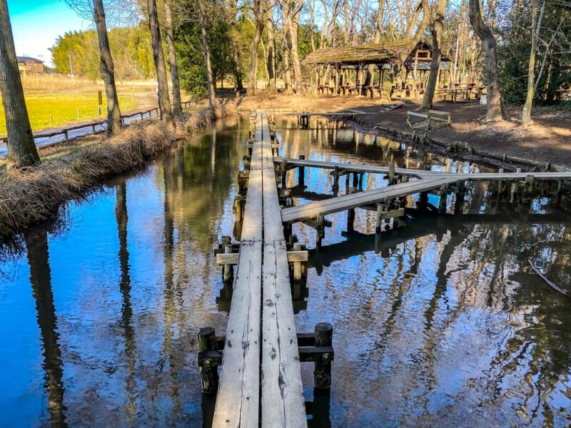 豊里ゆかりの森の湿地に掛かっている木製の橋