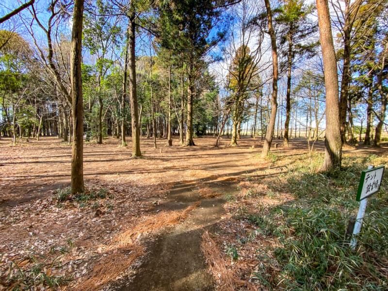豊里ゆかりの森キャンプ場のテント設営場