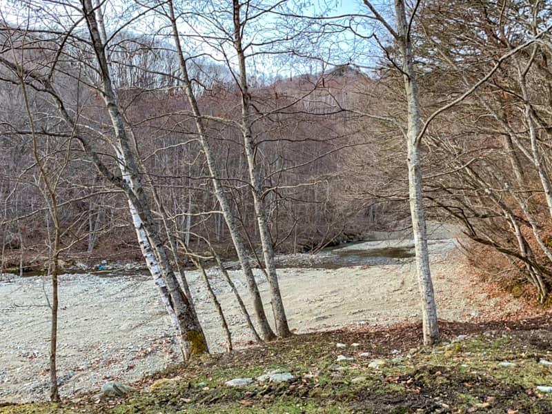 サイト4景観