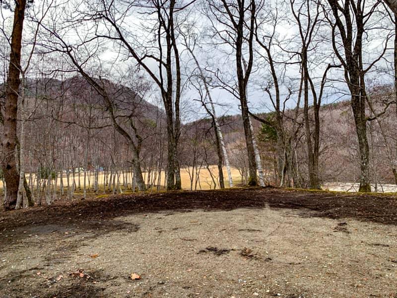 サイト5景観