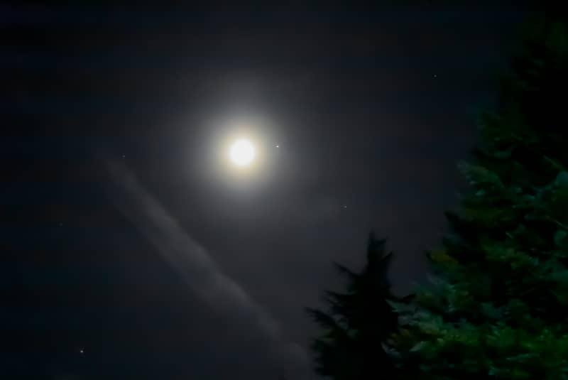市民の森キャンプ場から見える星空
