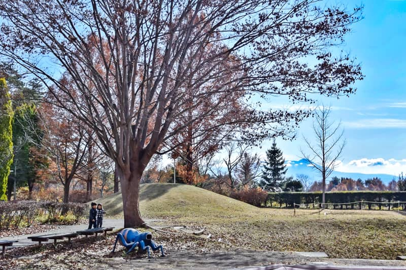 市民の森キャンプ場の子供が遊べる広場