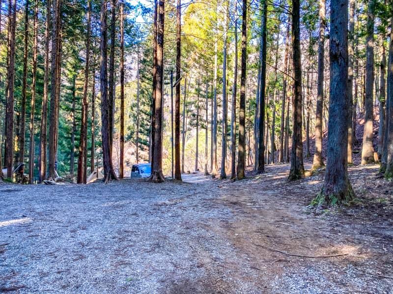 椿荘オートキャンプ場北の森エリア中間地点