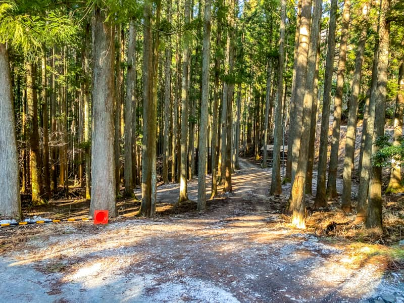 椿荘オートキャンプ場北の森エリア入口
