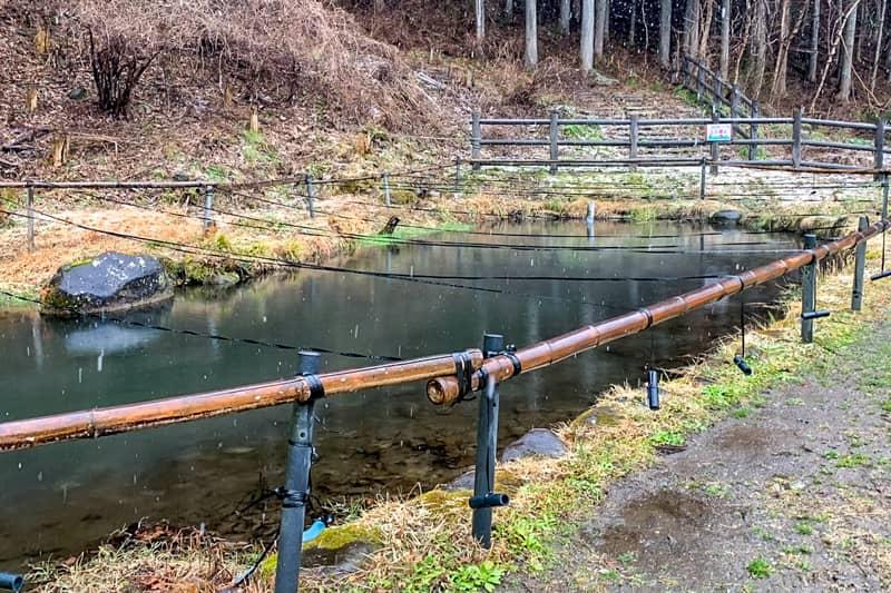 釣り堀り池