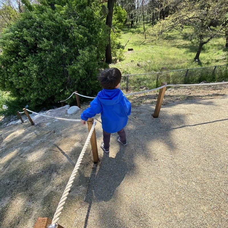 伊木山フォレストキャンプ場-11
